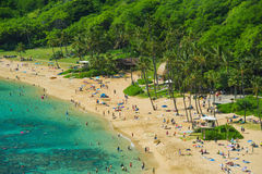 Coral reef snorkeling resort on Hawaii Stock Photography