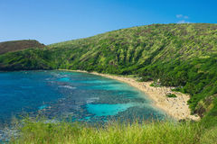 Coral reef snorkeling resort on Hawaii Stock Images