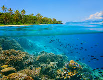 Coral reef in tropical sea on a background of green island Royalty Free Stock Photos