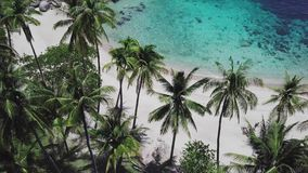 Coral Reef in Turquoise Lagoon beside Sandy Shoreline with Palm Trees in Tropical Country. Aerial Top View. Shot with a DJI Mavic fps 29,97 4k stock footage