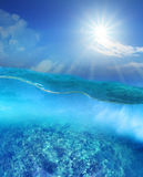 Coral reef under deep blue sea water and sun shining over sky Stock Photography