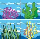 Coral reef under the sea. Illustration Stock Image