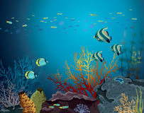 Coral reef and underwater creatures. Stock Photography