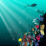 Coral reef with various species of fish. Underwater tropic life concept. Coral reef with various species of fish and silhouette of diver over blue sea background Royalty Free Stock Photos