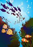 Coral reefs and colored fishes. Underwater world, coral reefs and colored fishes Stock Photo