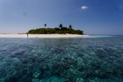 Coral reefs surrounding small tropical island with three palms in Pacific Royalty Free Stock Photography