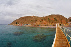 Coral reeves at coast. Of the resort city of Eilat stock photography