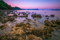 coral rock around beach during ebb tide and sunset time wide sho Stock Photo