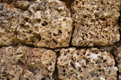 Coral rock wall Stock Photography