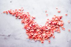 coral rose petals on marble, color of the year - flower backgrounds and holidays concept stock photo