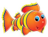 coral ryb Zdjęcia Stock