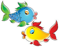 coral ryb Obrazy Royalty Free