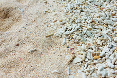 Coral sand Royalty Free Stock Image