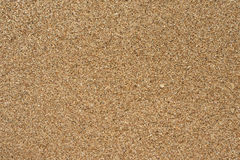Coral Beach sand texture. Coral sand from Manzanillo beach, Limon, Costa Rica Royalty Free Stock Images