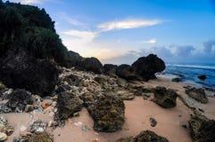 Coral Scenery medan soluppgång Royaltyfri Fotografi