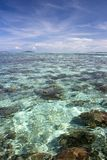 Coral Sea stock photography