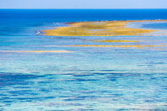 Coral Sea de Okinawa japão Foto de Stock Royalty Free