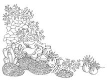 Coral sea graphic art black white underwater landscape illustration. Vector Royalty Free Stock Images