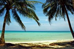Coral Sea Tropical Wild Beach-de Hemellandschap van de Zandpalm stock afbeelding