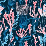 Coral Seamless Pattern Royalty-vrije Stock Foto's