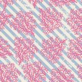 Coral Seamless Pattern Foto de archivo libre de regalías