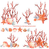 Coral and seashell nature background. Tropical underwater world nature background. coral watercolor illustration. underwater background vector illustration