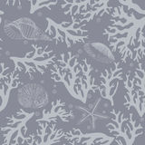 Coral, seashells seamless pattern in vintage style. Vector illustration Royalty Free Stock Images