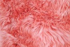 Coral sheepskin rug background sheep fur Wool texture. Coral colored sheepskin rug background. Wool texture sheep fur stock photos