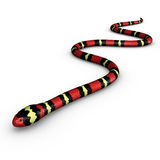 Coral snake Stock Images