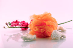 Coral and sponge - Spa concept Royalty Free Stock Photos