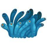 Coral vector. Illustration of a coral vector Stock Photos