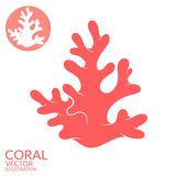 Coral. Vector illustration (EPS 10 Royalty Free Stock Photos