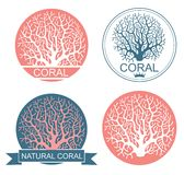 Coral. Vector illustration (EPS 10 Stock Images