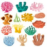 Coral vector sea coralline or exotic cooralreef undersea illustration coralloidal set of natural marine fauna in ocean. Reef and aquatic plant for aquarium stock illustration