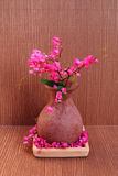 Coral vine in pottery vase Stock Photography