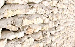 Coral Wall Stock Photos