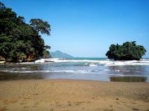 Coral y playa Fotografía de archivo