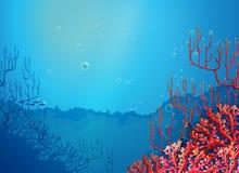 Corales hermosos debajo del mar ilustración del vector
