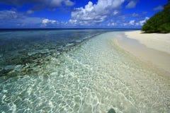 Corall海滩马尔代夫 免版税库存照片