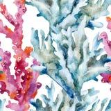 Coralli con le coperture ed i granchi illustrazione di stock