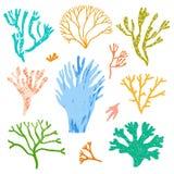 Coralli di vettore ed alga, alghe messe Flora del mare royalty illustrazione gratis