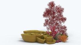 Corallo 3D Fotografia Stock