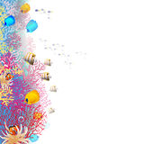 Coralreef. Sea reef with tropical fish Stock Photo