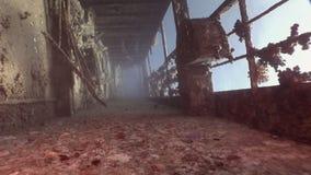 Corals on deck of sunken ship wreck Salem Express underwater in Red Sea. stock footage