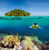 Corals, diver and palm island. Half underwater shoot Stock Photo