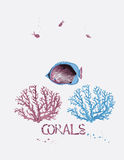 Corals and fish. Vector illustration of sea corals and tropical fish Stock Photo