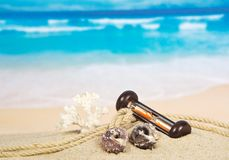 Corals, hourglasses on the sea coast Stock Images