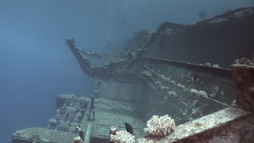 Corals on remains of sunken ships Salem Express underwater in Red Sea in Egypt. Extreme tourism on the ocean floor in the world of reefs, fish, sharks stock footage