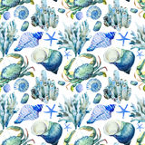 Corals with shells and crabs. Beautiful watercolor  pattern with corals shells and crabs Stock Photography
