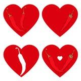 Coração da pimenta de pimentão Símbolo da paixão e do amor Grupo do vetor, isolado Fotografia de Stock